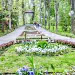 חופשת רוגע ומרפא בפולין- יוני/יולי 2019